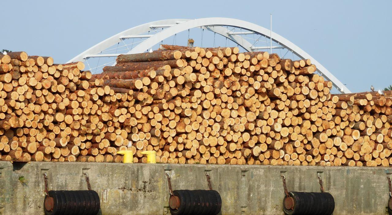 Baltic Sea Bridge Harbor Heap Industry Lumber Industry Stack Storage Timber Warehouse Wood Wood - Material Woodpile Minimalist Architecture EyeEmNewHere Kolobrzeg Poland Dock Docks