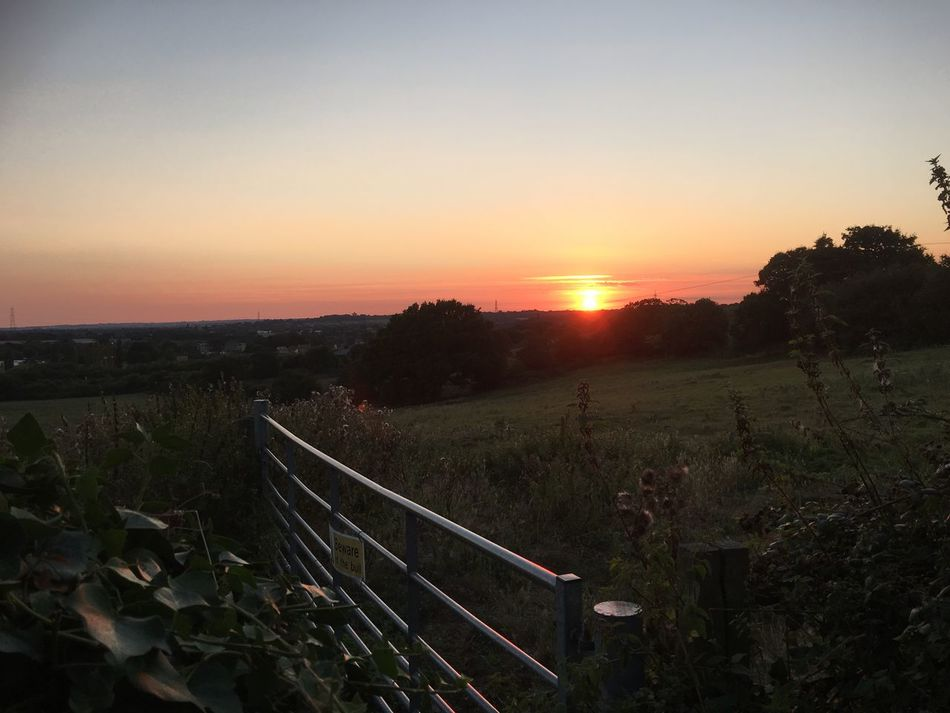 Sunset Scenics Red Sunset Beauty In Nature Nature Landscape Tranquil Scene Tranquility Rural Scene Sun Farm