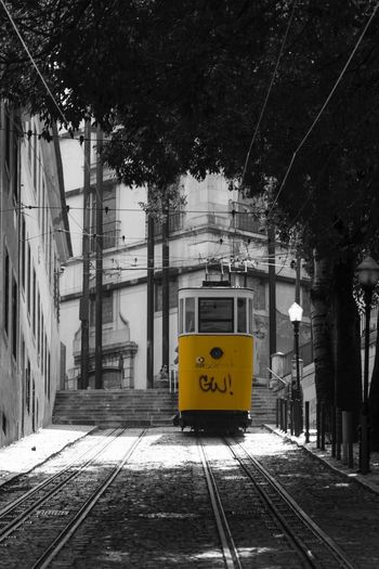 | calçada da glória | one of my alltime favourites :) Lisboa Lisbon Lissabon Lisbonlovers Portugal_em_fotos Elevador Electrico De Lisboa Tram Urban Transportation Transportation Capital Cities  Colorsplash Yellow Yellow Tram Rails Urban