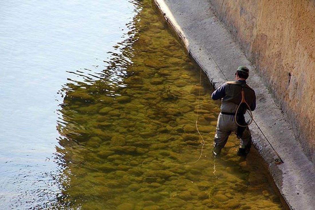 River Fiume Lume Pescatore Uomo Fisherman Peshkatar BassanodelGrappa Italia Acqua Uje