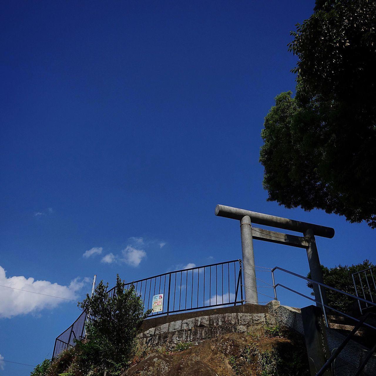 Shrine TORII Low Angle View Sky Tree Blue Japan