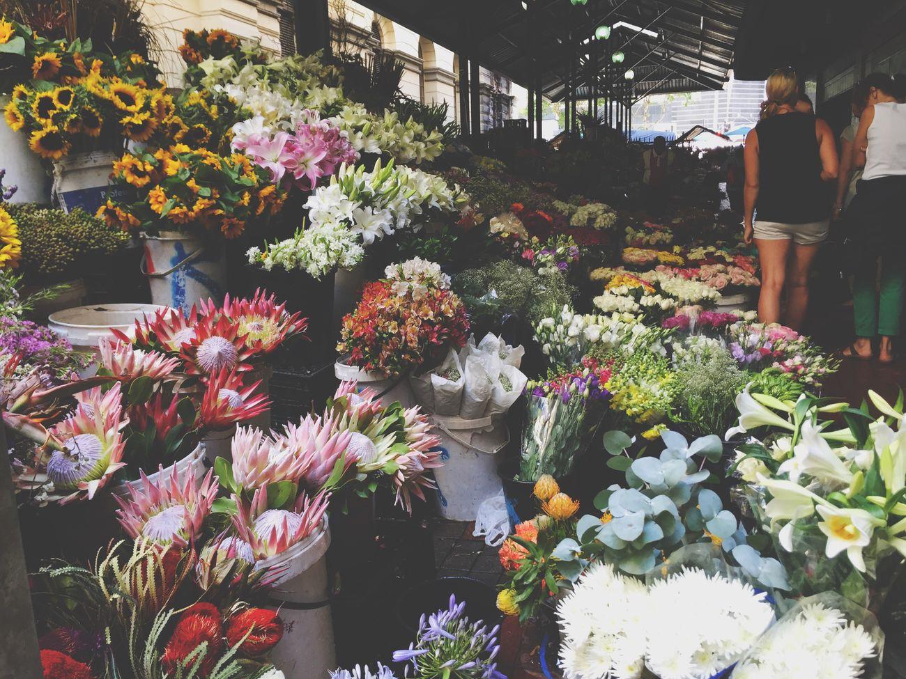 Flower Flowers Flowerporn Everywhere Beauty Lovelyflowers