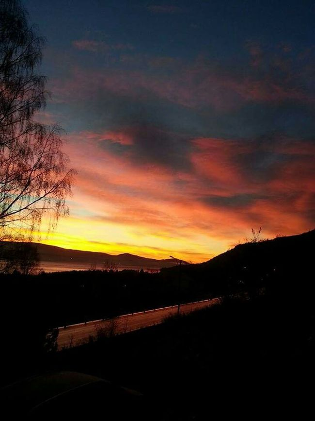 Good night from Norway 😊 Spetacular Colorful Sunset Sunset_collection Sunsetporn Skyporn Skyinfire Taking Photos Hello World Enjoying Life Home Sweet Home Winter Beautiful Nature_collection EyeEm Nature Lover Ilovenature Eyem Best Shots Eyem Nature