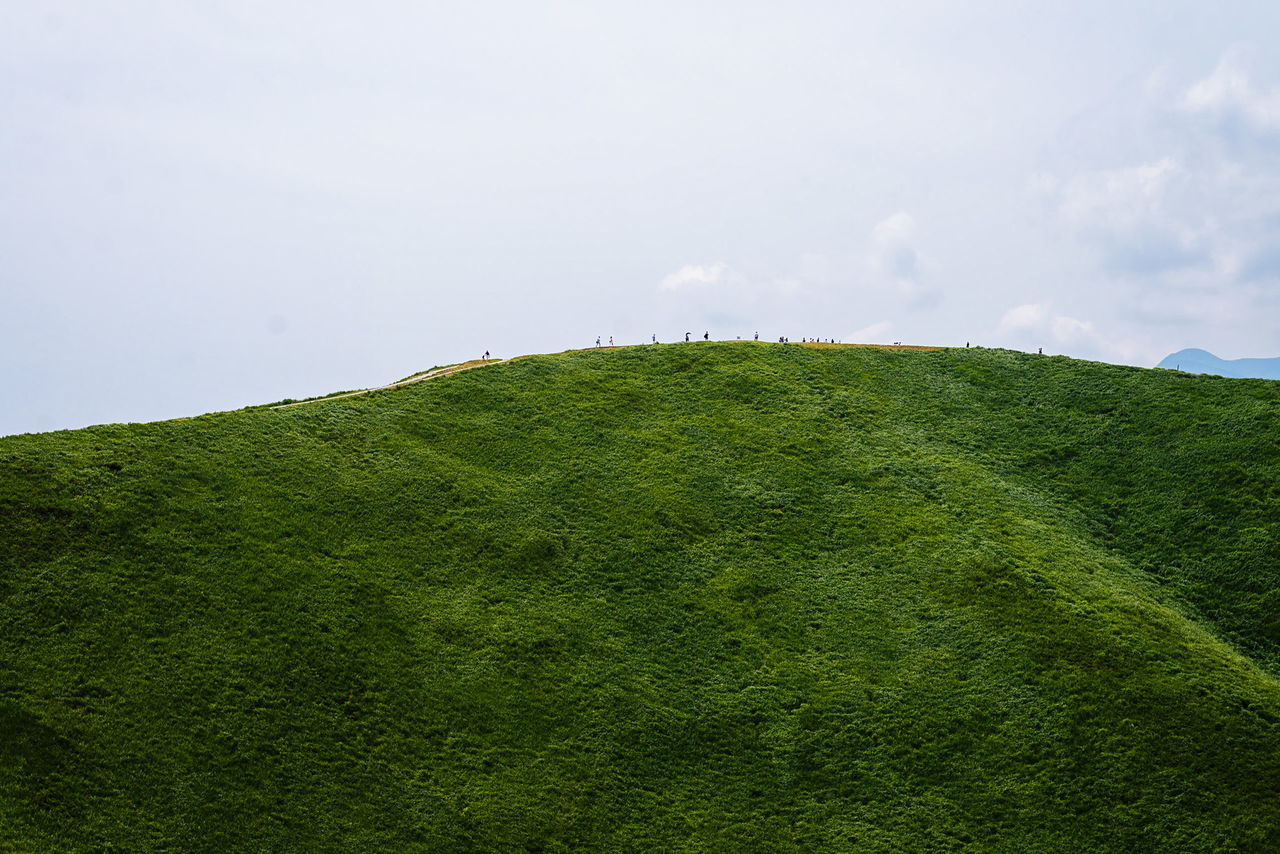 Tiny humans in Omuroyama Volcano, Izu Beauty In Nature Cloud - Sky Day Grass Green Color Growth Hill Idyllic Landscape Lush Foliage Nature No People Outdoors Scenics Sky Slope Tranquil Scene Tranquility