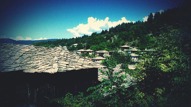 Summer Village View