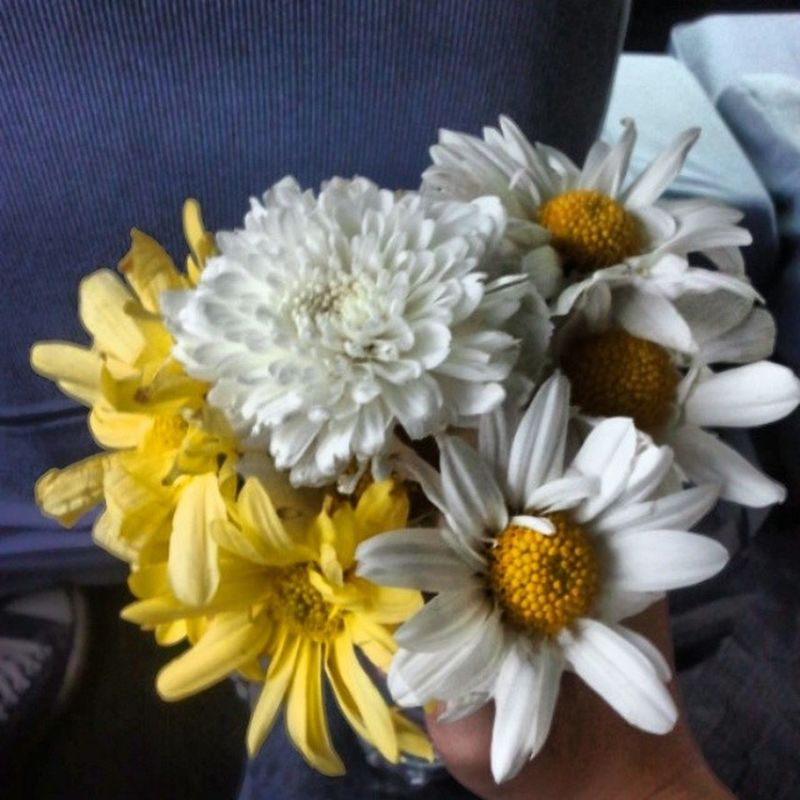 I had a trauma on holding and sending roses and im still unwell at this moment. Since its february, i still love flowers for my loved ones but i think not roses for now :( Yellowflower Whiteandyellow Vibrantpetals Flowers brokenfebruary