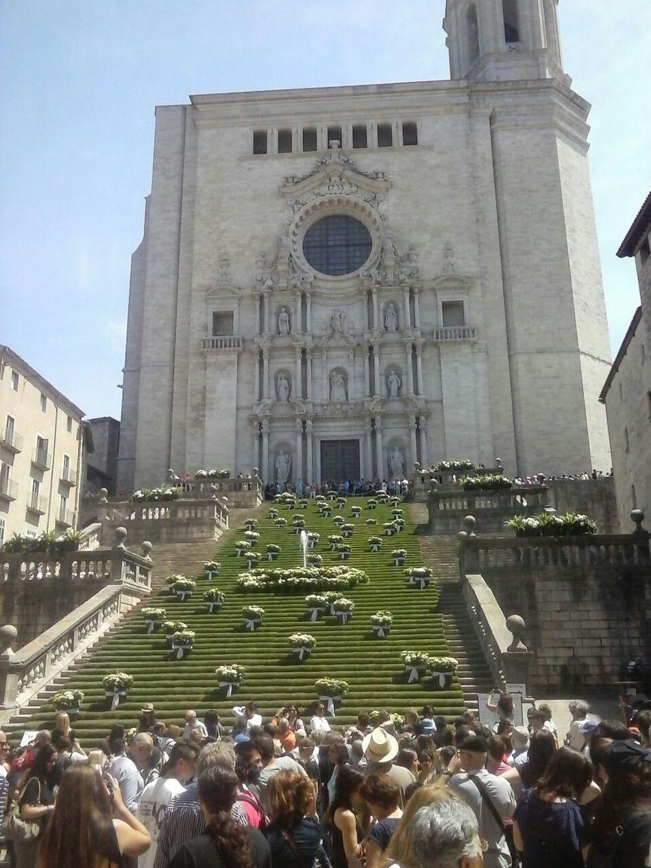 Girona Gironamenamora Temps De Flors Tempsdeflors Spring Flowers Cathedral Heritage