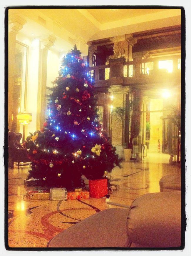 Christmas Christmas Tree Hotel