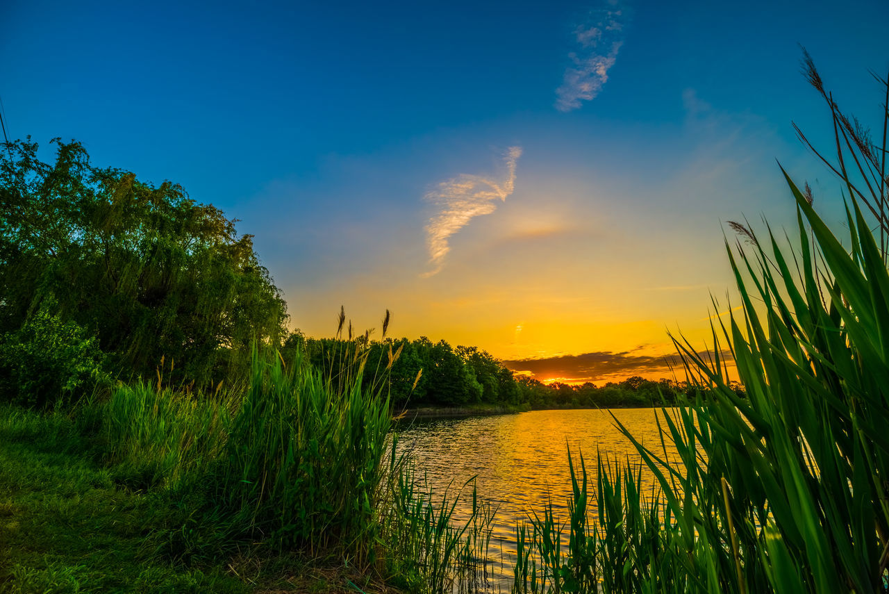 Baltimore Beauty In Nature Blue Clous Cufotos Gold Green Landscape Maryland Nikon Nikonphotography Orange Color Paradise Plants Poney Reeds Sky Sun Sunrise Trees Water Waterfront White