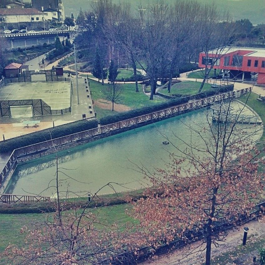 Yesterday Aveiro Lago Parque  Biblioteca Park Lake Nature Library