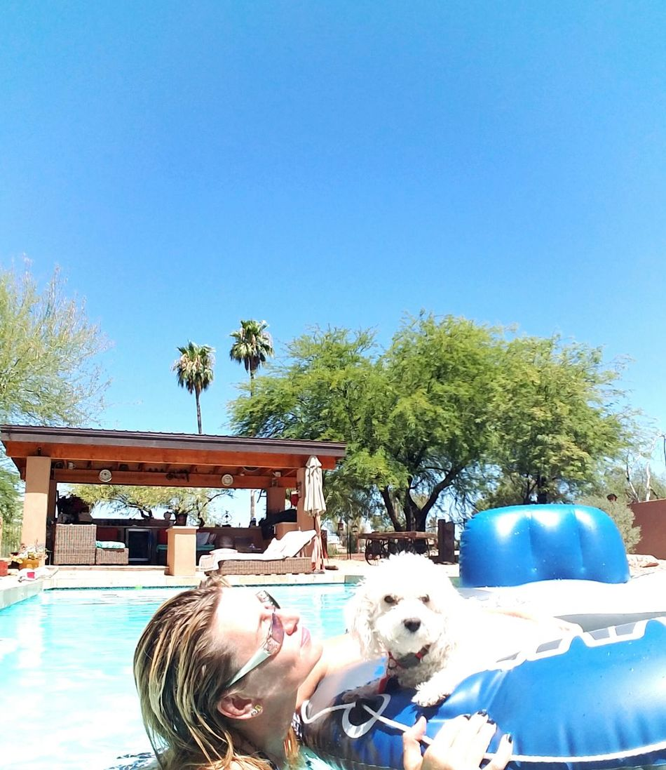 Enjoying Life Check This Out PuppyLove Wanttogoforaride Relaxing Arizona Sky Hot_shotz That's Me Weekend Activities Beautyisintheeyeofthebeholder Lounging Around Lifestyles Pool Day  Youmustlovenature Magic Summer Views