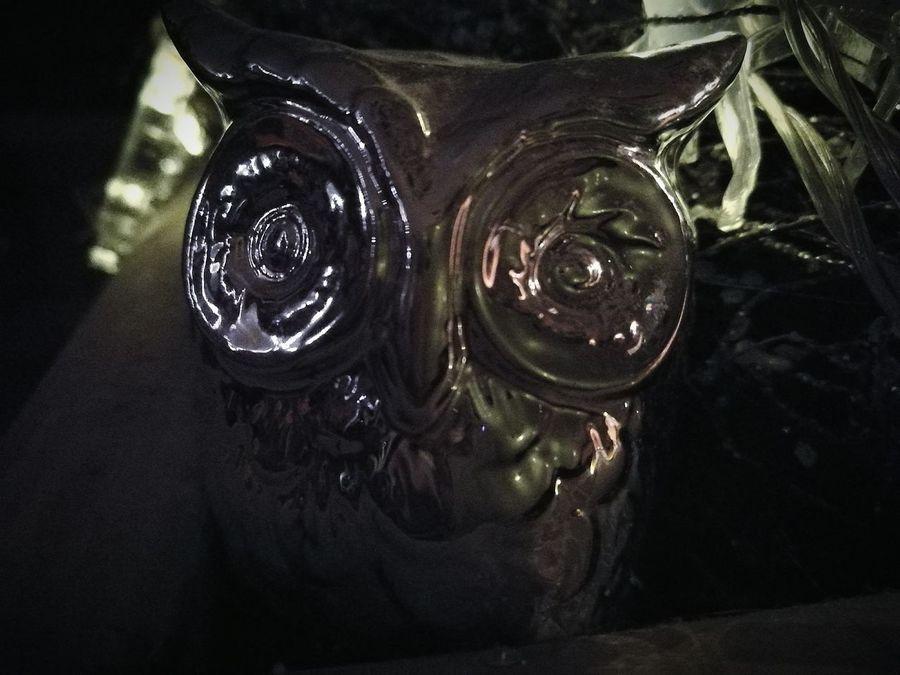 Indoors  Eule Eulen Style  Decoration Deko Dekoration Silber Owls💕 Owl Owls Old-fashioned