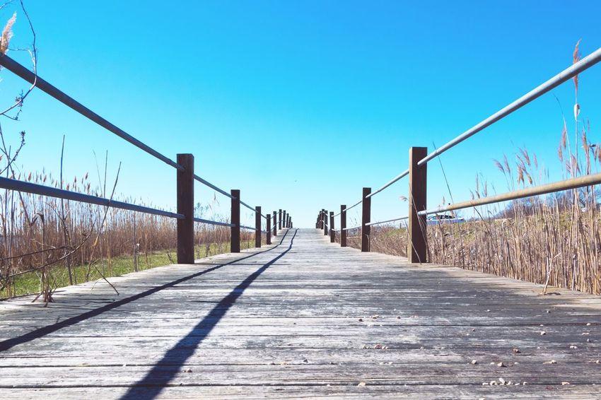 Blue Bridge - Man Made Structure Sky Outdoors Boardwalk Nikon Nikon D3300 No People Connection Day Nature