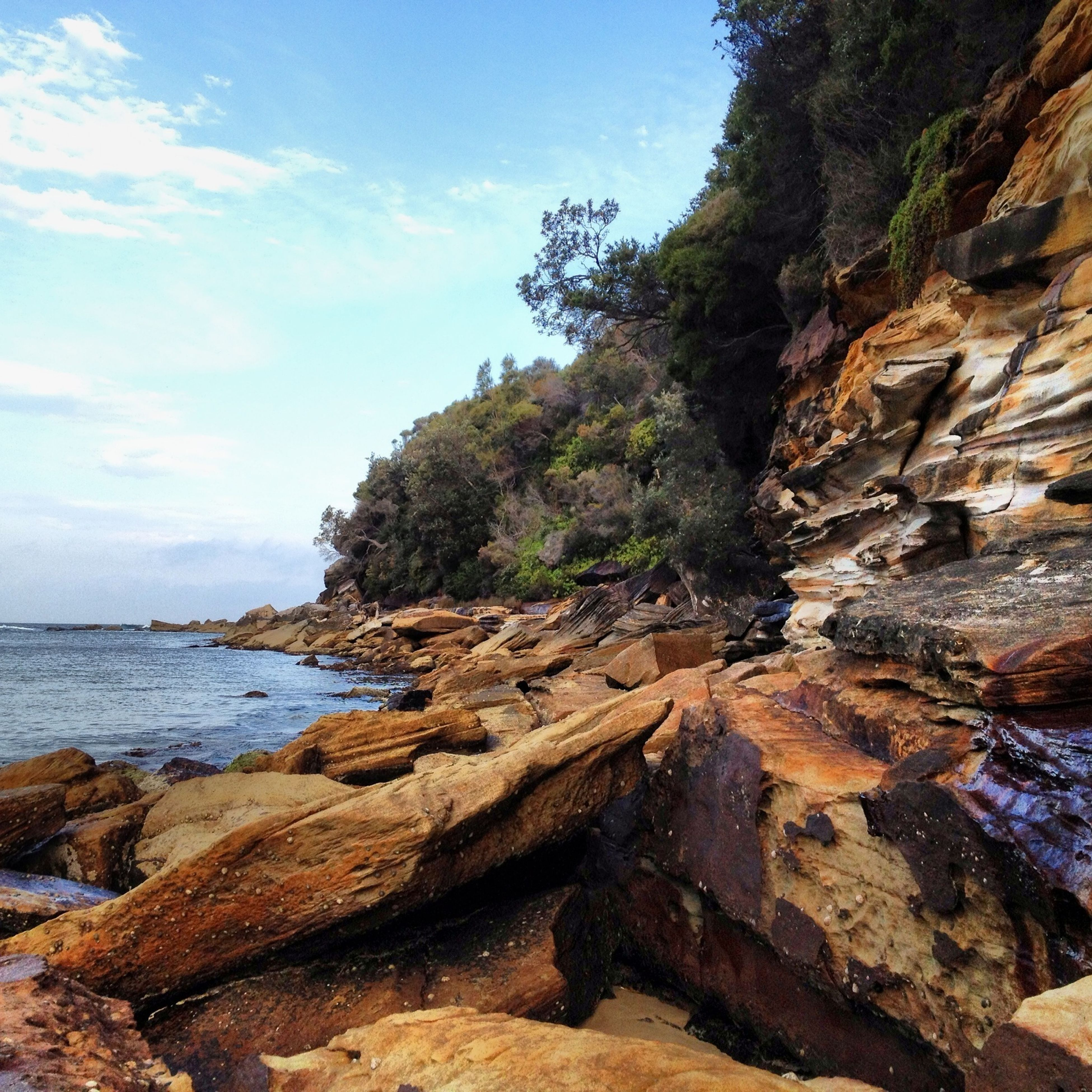 sea, water, tranquility, tranquil scene, beach, sky, scenics, rock - object, beauty in nature, tree, nature, shore, rock formation, horizon over water, rock, idyllic, coastline, sand, cliff, day