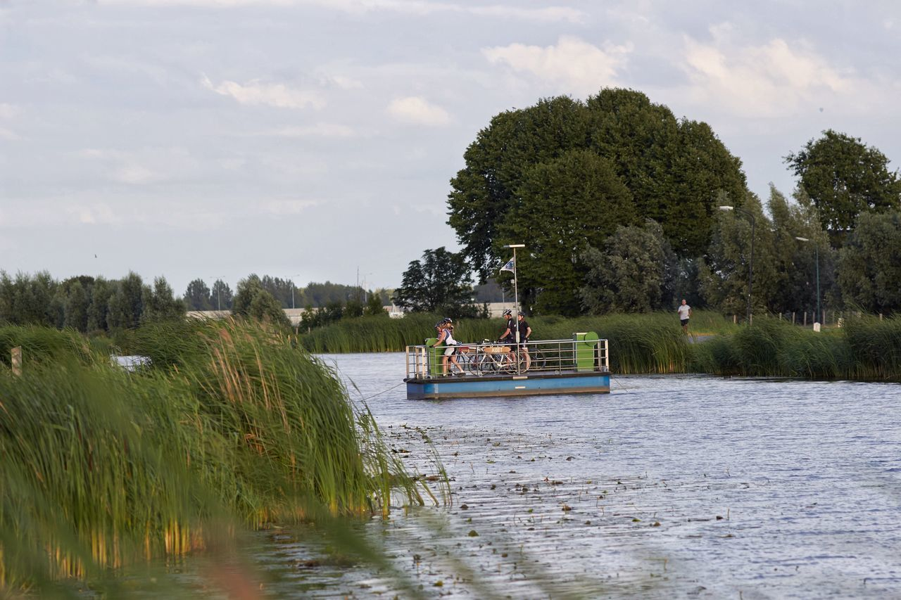 Ferryboat DIY Cyclists Heen En Weer This Side River View Dutch Countyside