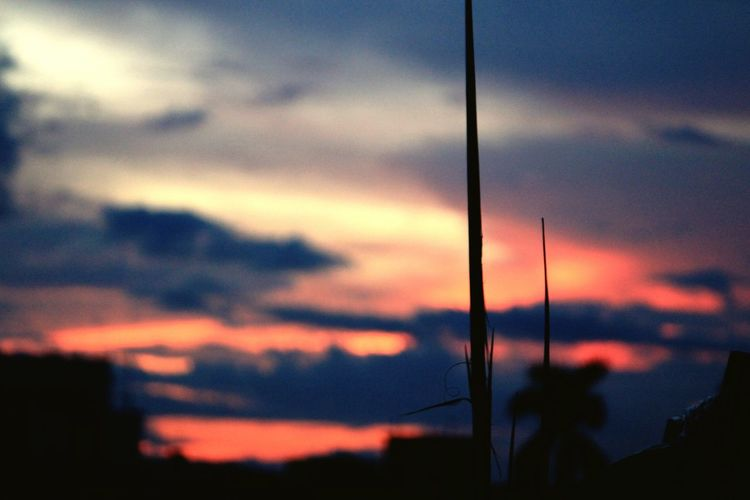Depth Of Field Focus On Foreground Iluvphotography Evening Sky