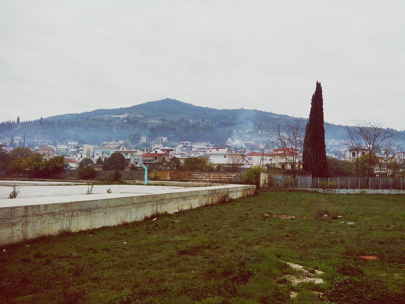 Nemea 2013 2014