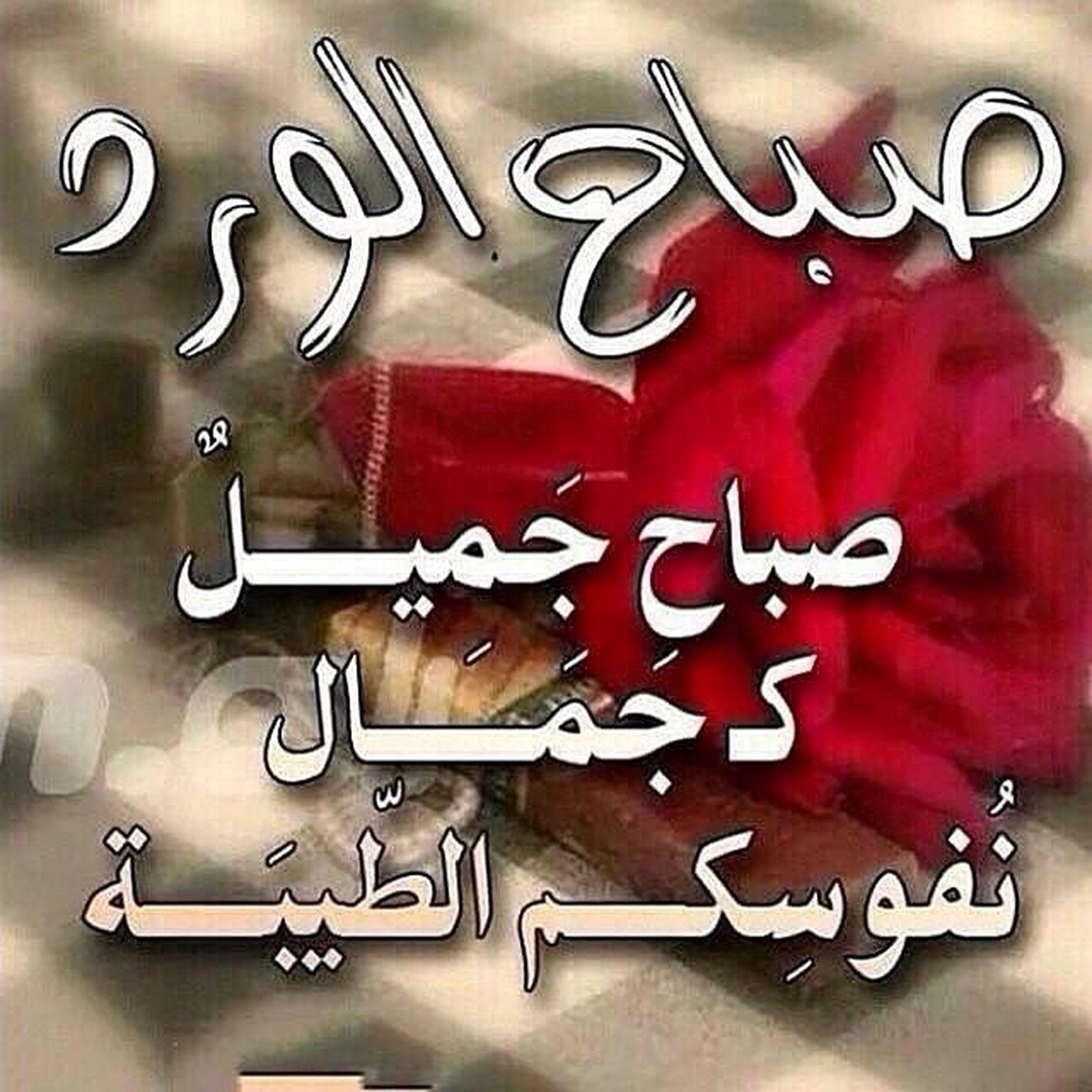 صباح_الفرج_من_الفرج صباح الخير صباح_الورد Good_morning