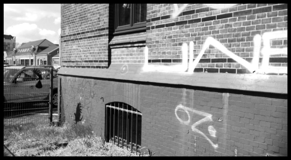// Une Flying Shadow - OZ in the World of Birds // Crows Birds In Flight Birds Of EyeEm  Shadow Shadowhunters Graffiti One Writing On The Wall Lerone-frames Blackandwhite Wrinkles Of The City  A Moment Of Zen... Blending Into The City Black And White Schattenspiel