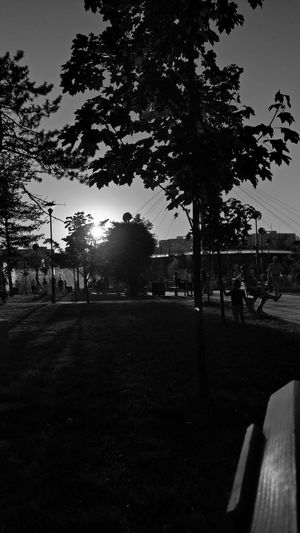 Blackandwhite Sunset Park Hanging Out