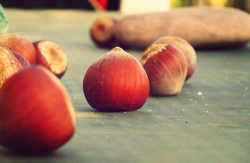 Macro Hazelnut Belong Anywhere