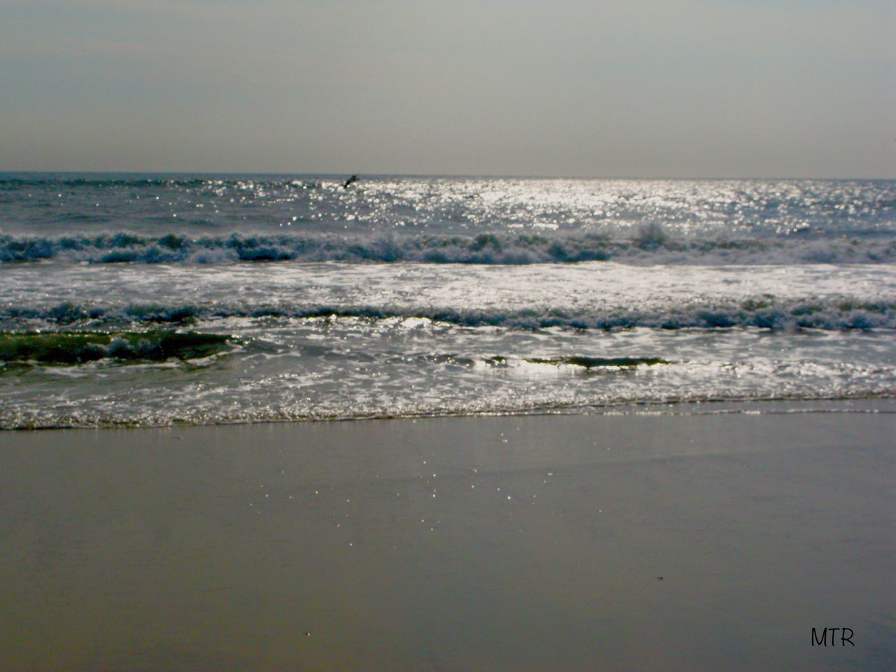 Sea Beach Nature Beauty In Nature Tranquility Wave Water Sky Scenics Horizon Over Water Clear Sky No People Outdoors Day Fireislandnationalseashore LongIslandNY SouthShore Beach Smithpoint Beach Summer's Coming Sand Nature Summers