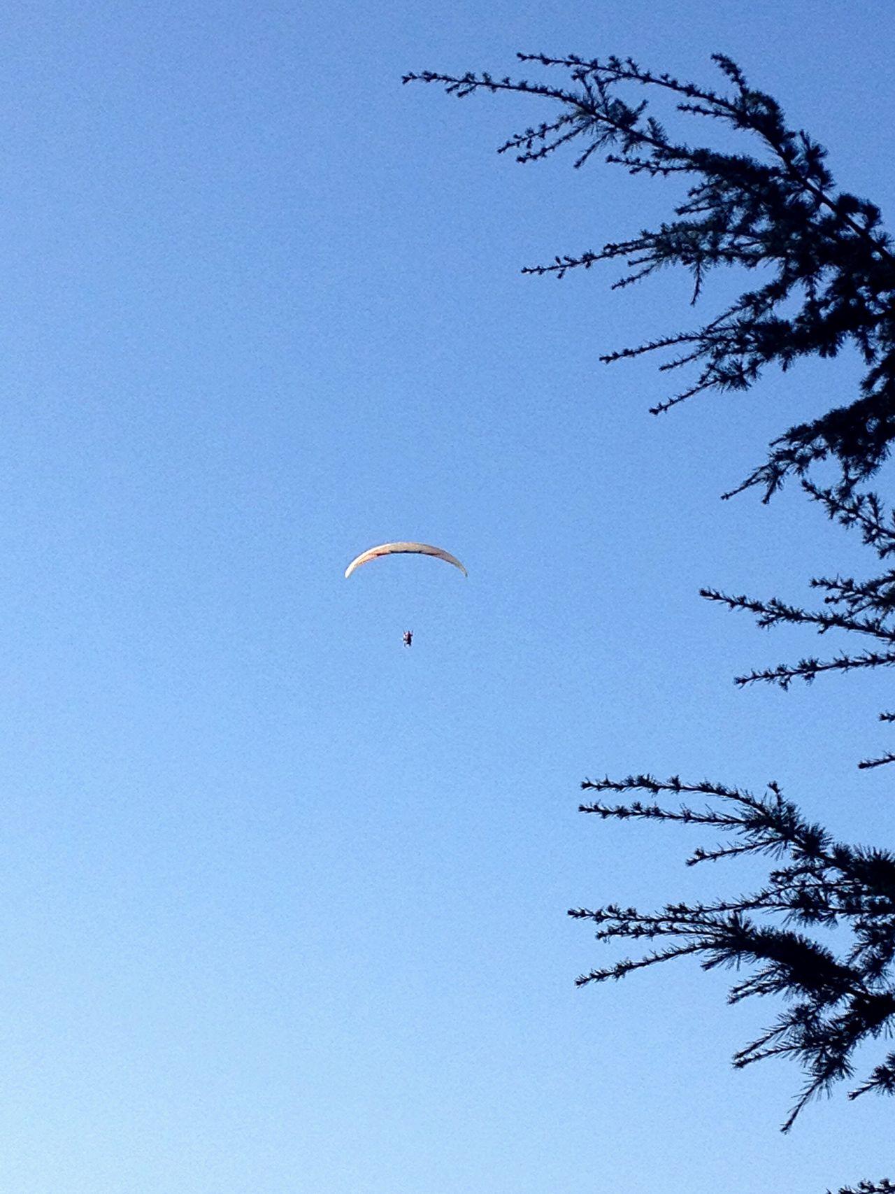 Parasailing Blue Sky Tree And Sky Harrisa Paragliding Lebanon