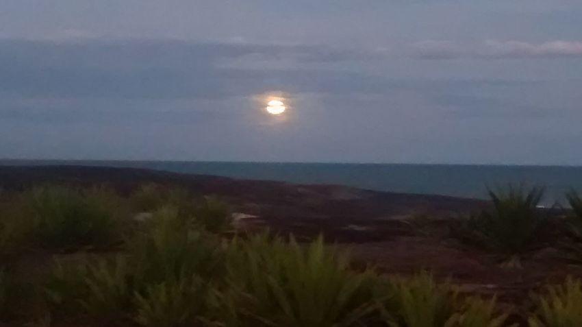 Moonlight Sea And Sky Peaceful Fisherman