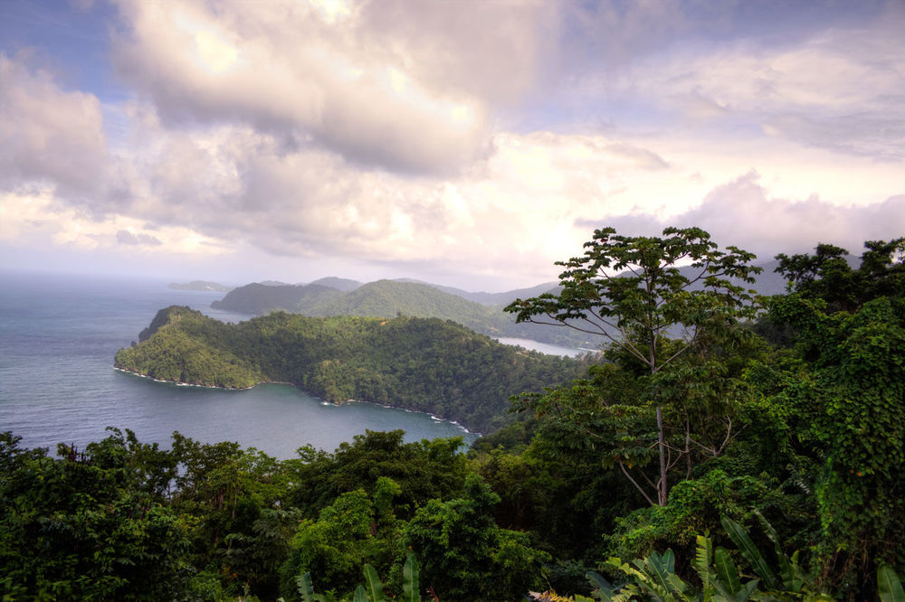 Maracas Beach Trinidad And Tobago Beauty In Nature Cloud - Sky Day Forest Landscape Maracas Mountain Nature No People Outdoors Scenics Sea Sky Tranquil Scene Tranquility Tree Water Lost In The Landscape