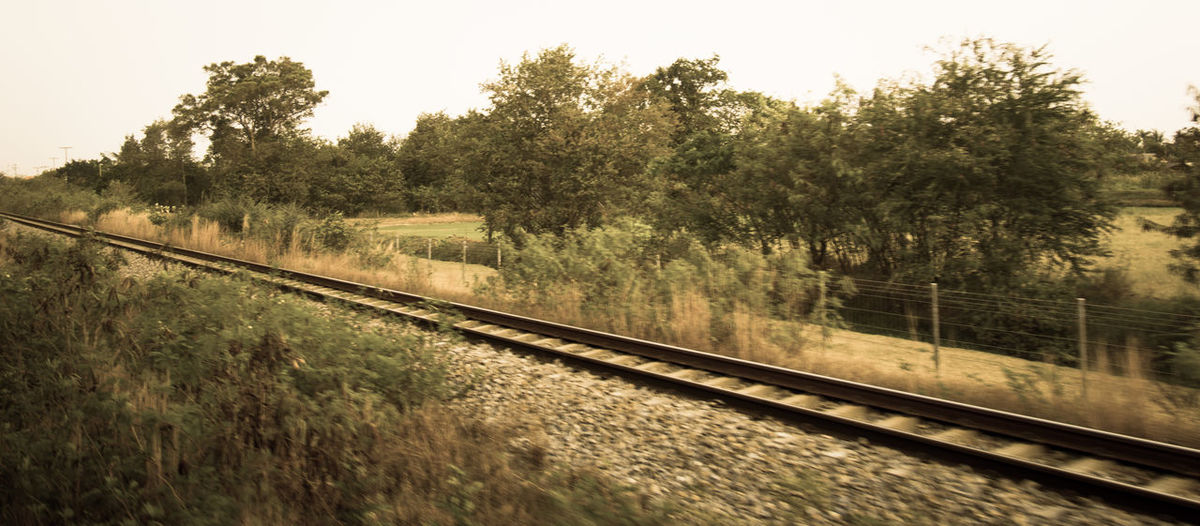 Beauty In Nature Day Growth Landscape Nature No People Non-urban Scene Outdoors Railroad Track Scenics Sky The Essence Of Summer The Great Outdoors - 2016 EyeEm Awards Tranquil Scene Tranquility Tree