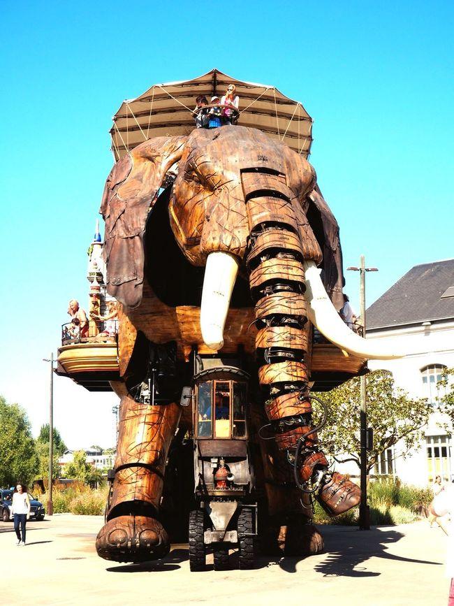Un éléphant dans la ville Machinesdelile Nantes Elephant Avec Des Yeux D'enfant