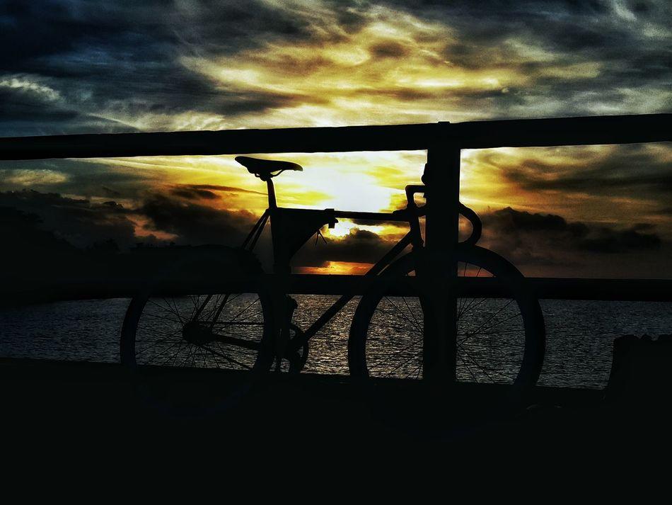 Fixieporn Fixie Track Bike Sunset Rider