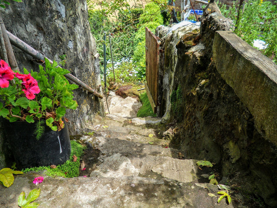 Deterioration Old And New Old Stairs Outdoors Plant And Stone Rough Ruined Stairs Stairs_collection Stone Wall Textured