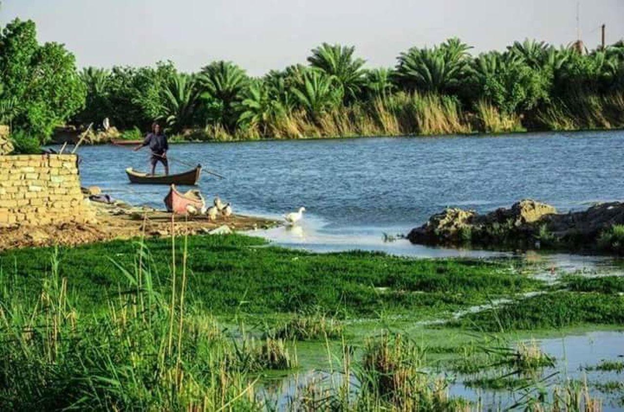 Alahwar Ahwar Of Iraq Marshes Canoe Mashhof Mud House Fishing 😚 Fishing 🎣 Fishermen Marshes 🇮🇶 🎈👻 Iraq Mesaan South Iraq Historical Monuments History First Writing Her Sommer First Writing Mud Writing