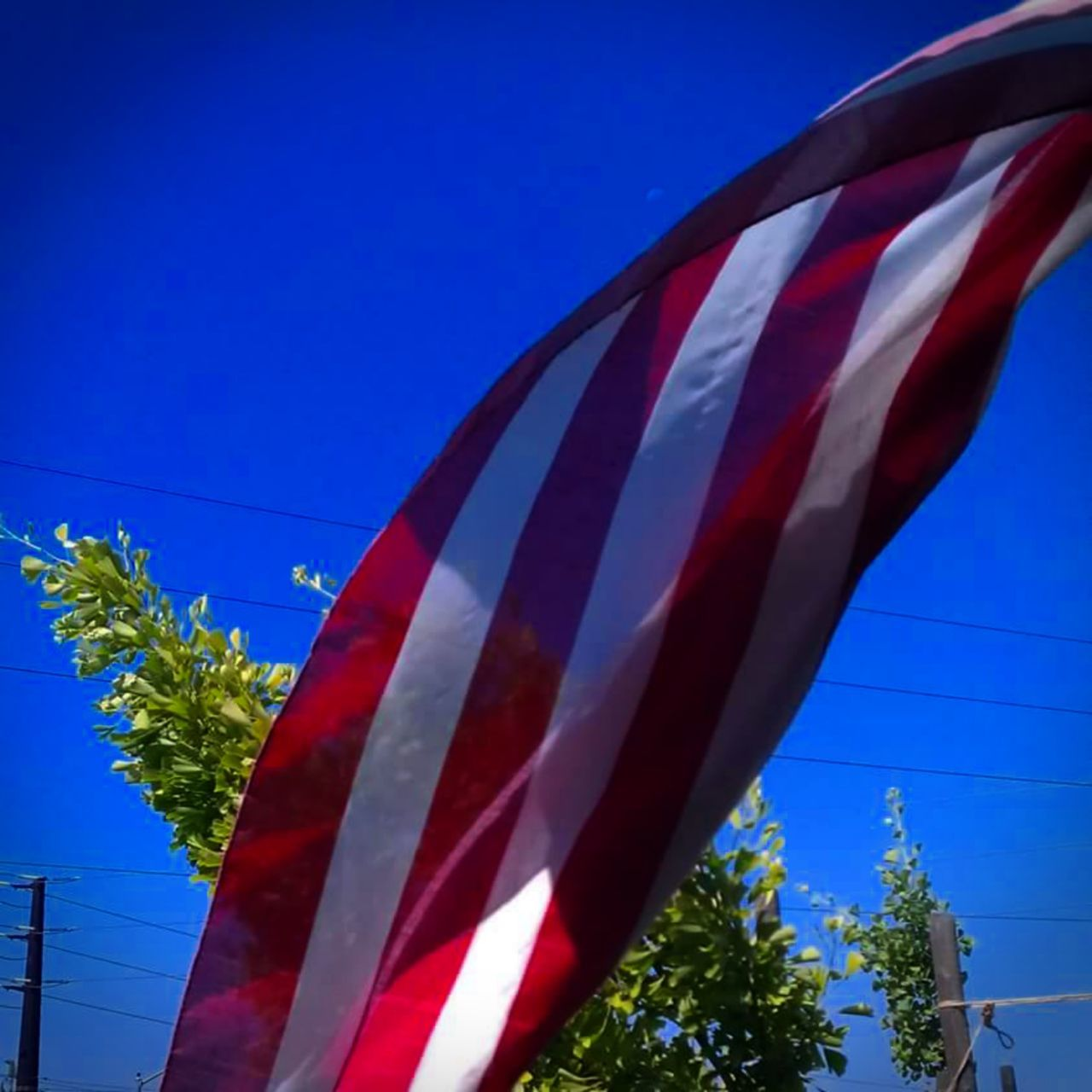 Showcase March Taking Photos American Flag Colour Of Life Blue Color Blue Sky Color Photography No People, Outdoors Riverside California Home Is Where The Art Is Beautiful Day Red White And Blue Moon Daytime Moon Flags In The Wind  Color Palette Eyemphoto