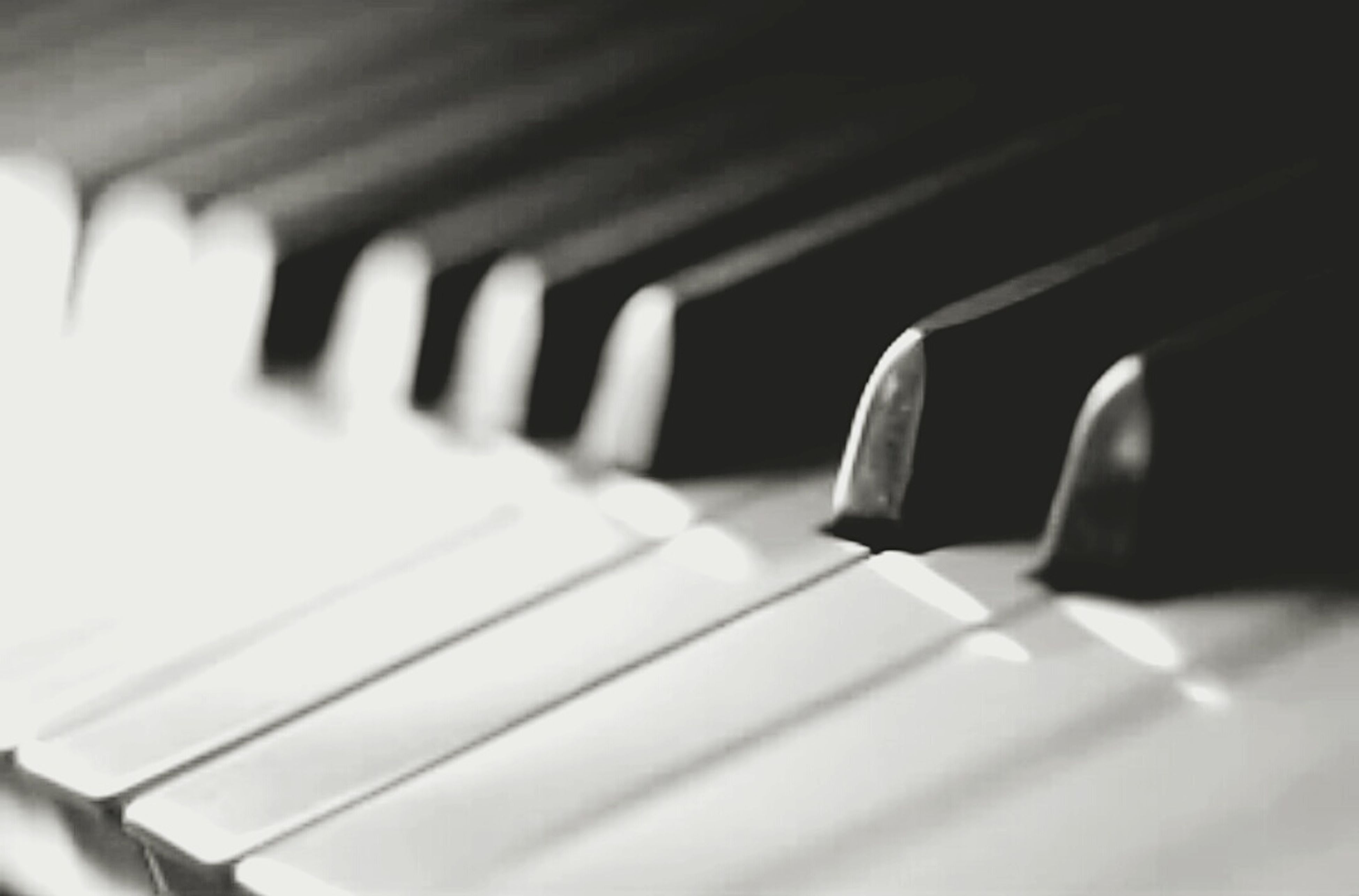 indoors, close-up, selective focus, in a row, music, piano key, arts culture and entertainment, focus on foreground, musical instrument, piano, repetition, still life, no people, part of, white color, pattern, detail, musical equipment, empty, shadow
