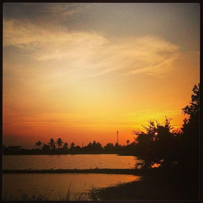 Mambog's sunset. Sunsettoday Sunset Sunsetlover Naturelover Fishpond Malolos Bulacan Philippines @photosharingsunsets @photosharingcommunity