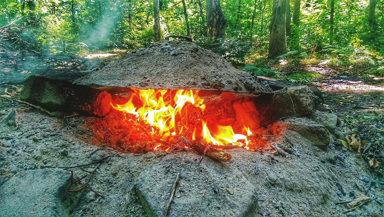 Fire Barbecue Into The Woods Red Weekend Trips To Never Forget Edge Of The World My Best Photo 2015