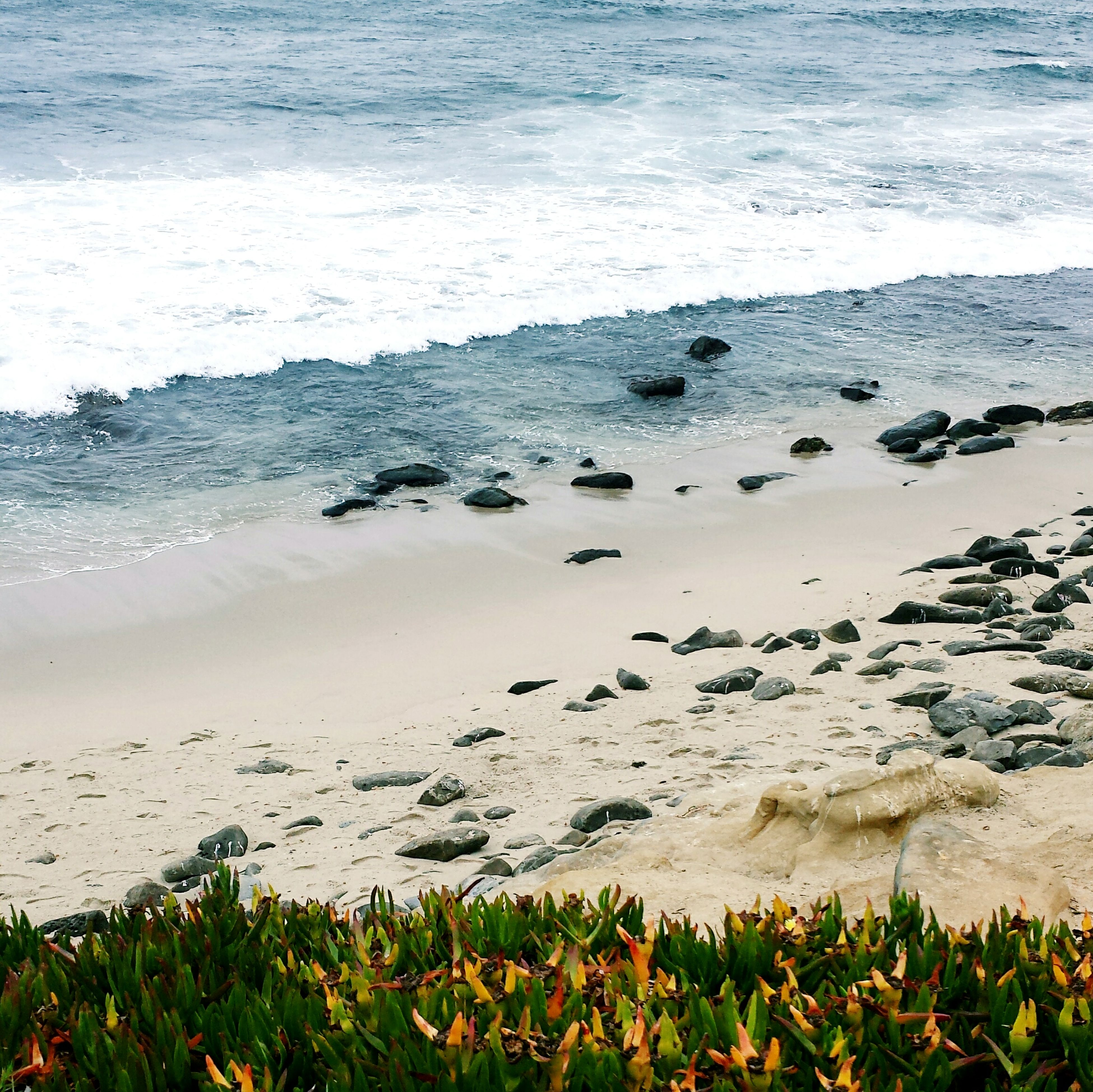 sea, water, beach, shore, tranquility, beauty in nature, tranquil scene, horizon over water, nature, scenics, wave, sand, coastline, grass, surf, plant, high angle view, day, idyllic, no people