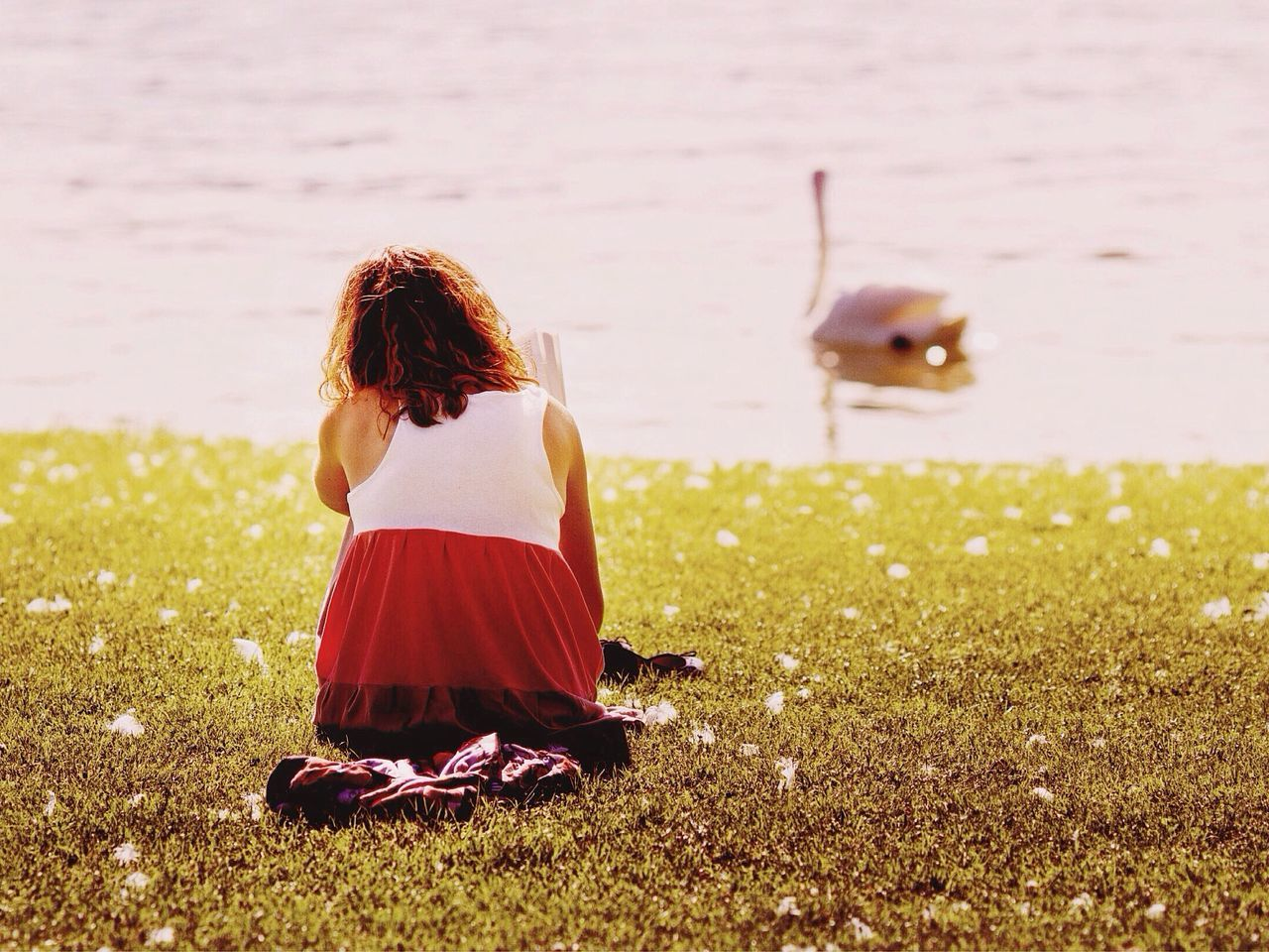 Rear View Of Woman Sitting On Grass Against Lake