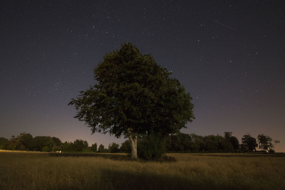 Beautiful stock photos of sterne, Astronomy, Barham, Beauty In Nature, Color Image