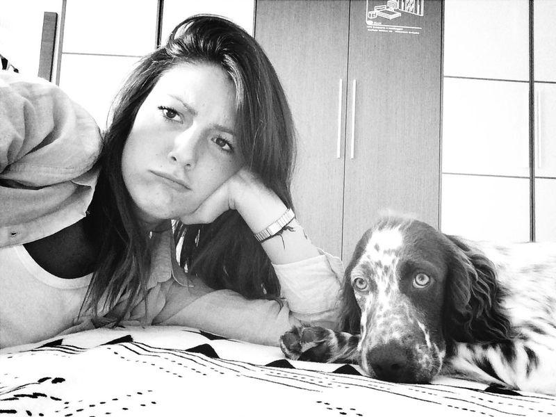 Ghira Amore Mio ❤ Dog Friends English Setter