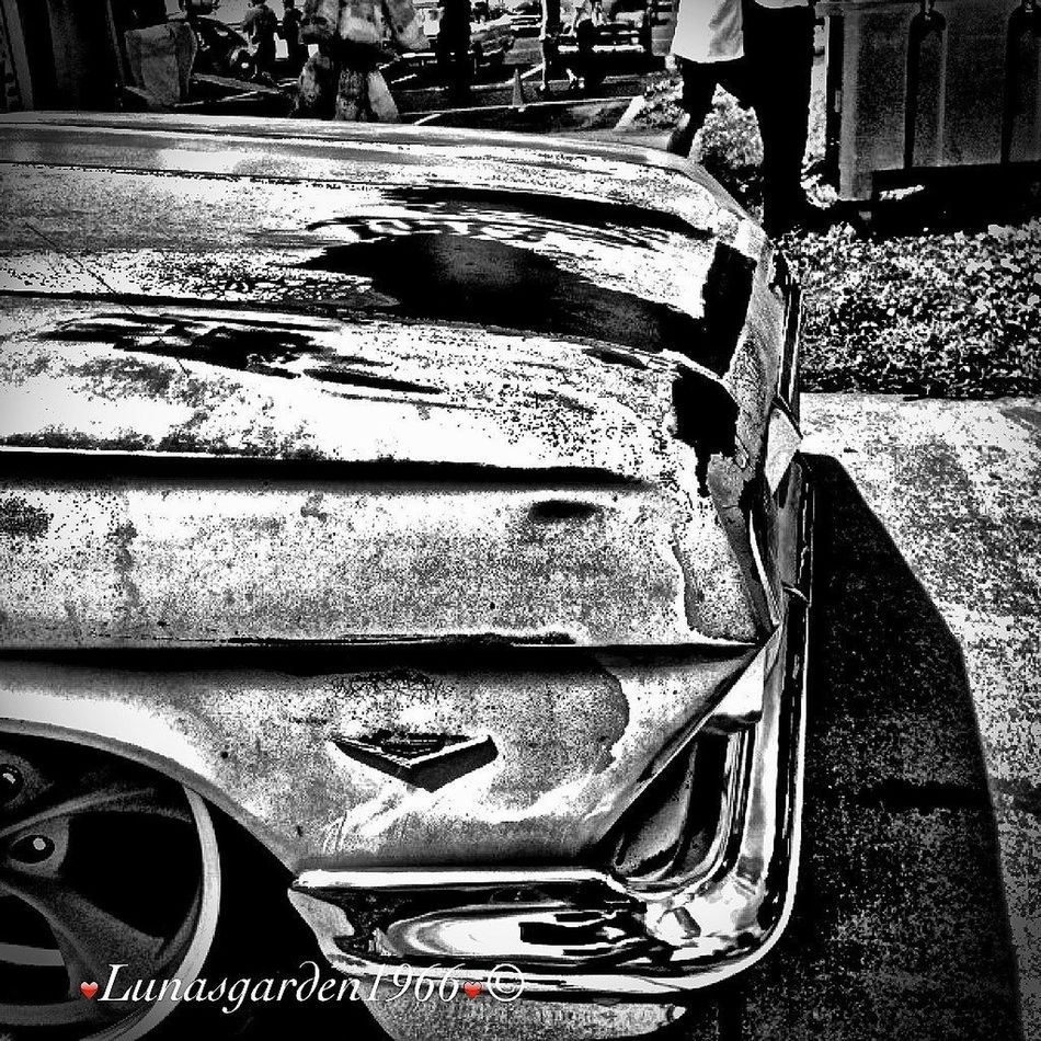 The Art Of Decay Fortheloveofblackandwhite Hanging Out Blackandwhite