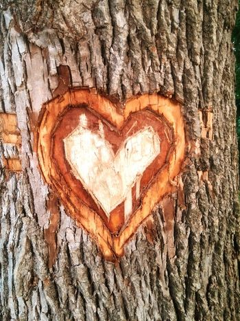 Love Goals Parents Love For Eachother Romantic Heart Carved Into Tree Thoughtful Skill  Surprise Admiration Hopeless Romantics  Smile Carving In Wood Carving Art Passion Raw