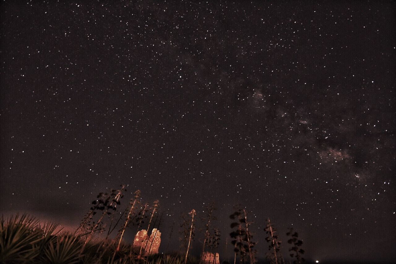 Night Low Angle View Scenics Tranquil Scene Star - Space Tranquility Beauty In Nature Star Field Sky Glowing Astronomy Nature Idyllic Galaxy Outdoors Majestic Dark Large Group Of Objects Space Non-urban Scene Cagliari Urban City Cagliari, Sardinia La Sella Del Diavolo Long Exposure