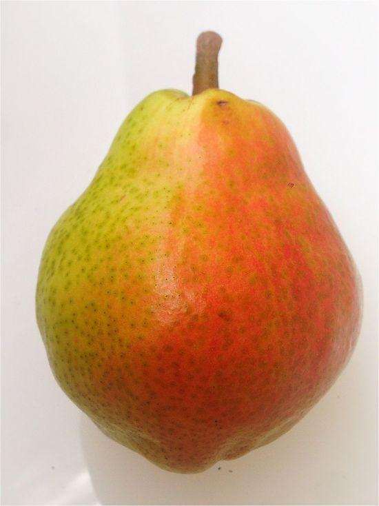 Pear in Heaven Urban Nature Food Wohnglück