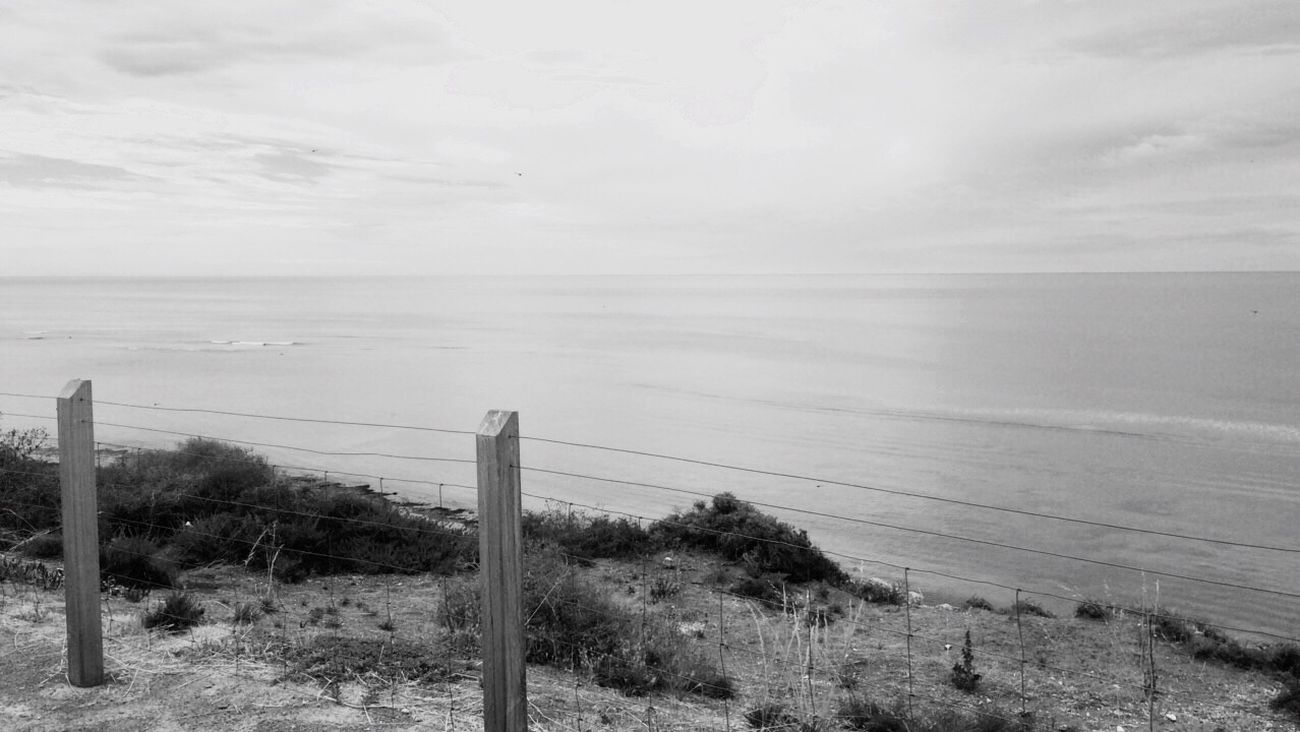 View Rachelcharlesworth_photography EyeEmNewHere Travel Photography Beach Sea Water Wood Poster Sky Tranquility Horizon Over Water Outdoors Day No People Ocean Adelaide, South Australia