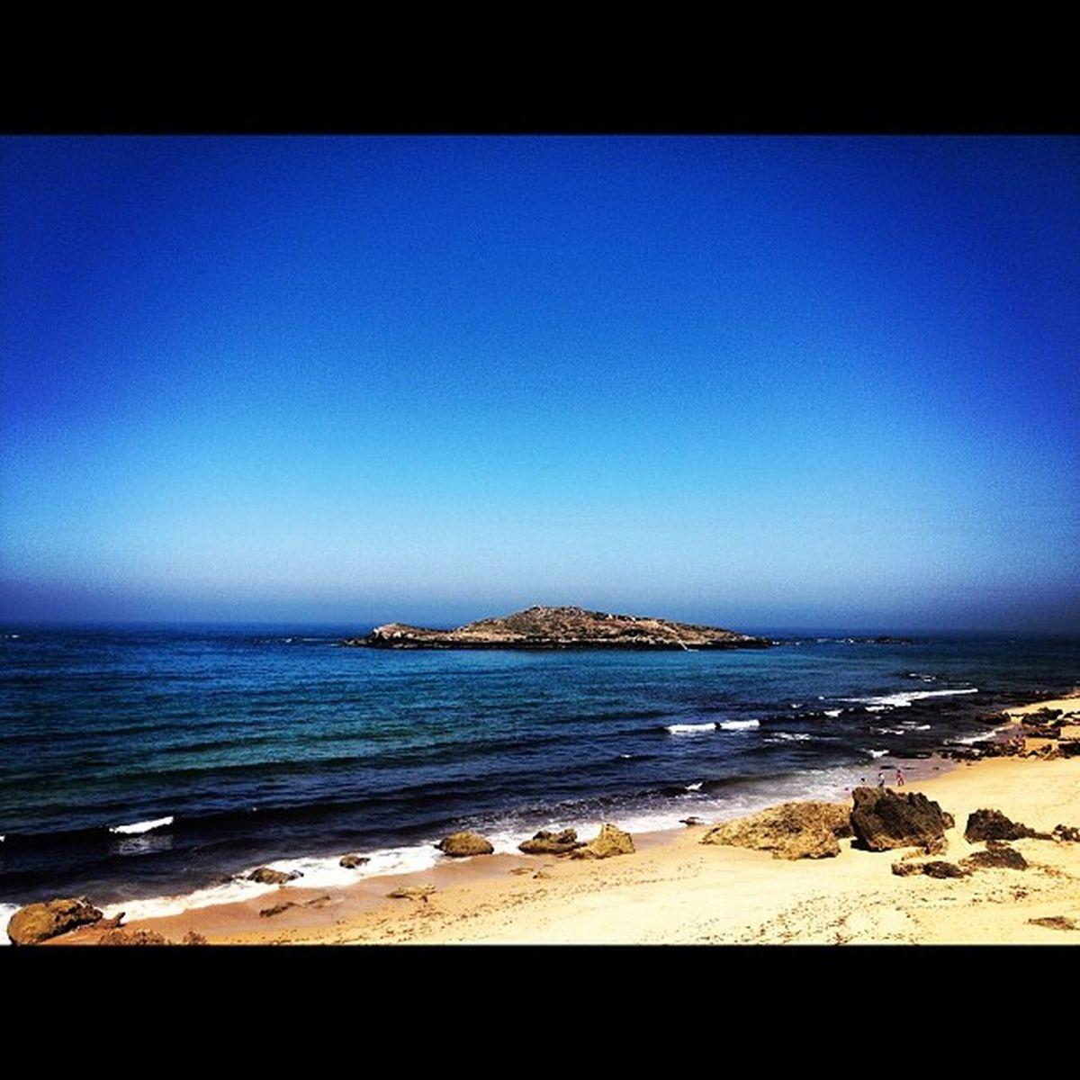 #island #ilhadopessegueiro #ilha #odemira #portocovo #beach #praia #costaalentejana #iphone4s #instagood #instagram #instalove #iphonesia #instamania #popular #portugal #portugaldenorteasul #holidays #sun #summer Popular Portugal Iphonesia Instagram Instagood Instamania Instalove Summer Ilha Beach Portugaldenorteasul Sun Odemira Costaalentejana Holidays Portocovo IPhone4s Island Praia Ilhadopessegueiro