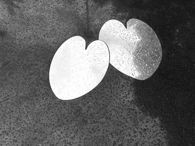 Symbol EyeEm Minimalism Day Shadows Streetphoto_bw EyeEm Team Minimalist Bw_collection Minimalism_bw EyeEm Best Shots EyeEm Bnw Fragility Taken On Mobile Device Outdoors