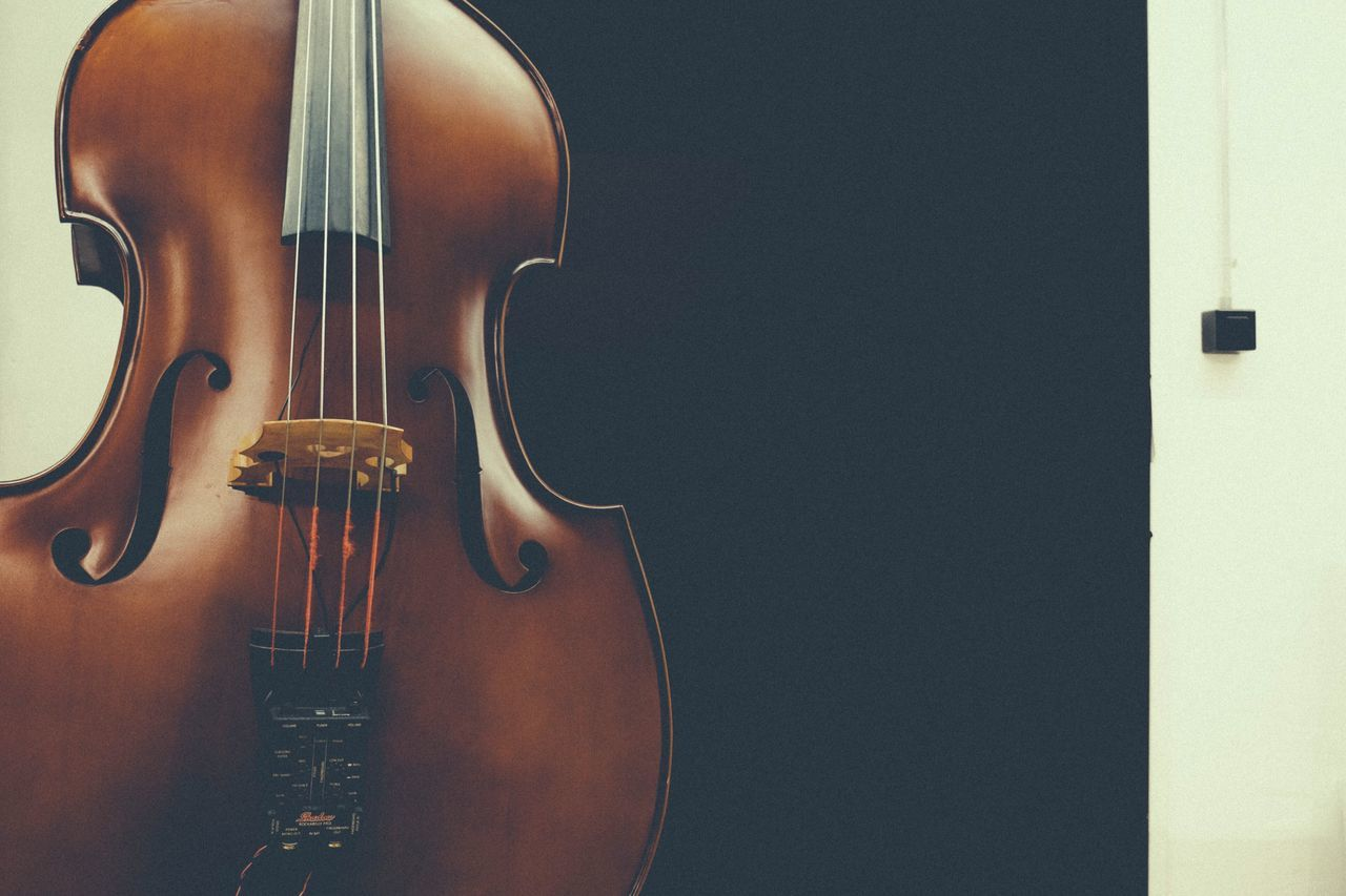 Music Musical Instrument String Arts Culture And Entertainment Musical Equipment No People Close-up Classical Music Point Of View Fine Art Photography String Instrument Ligth And Shadows Enjoying Life Simple Photography Minimalism